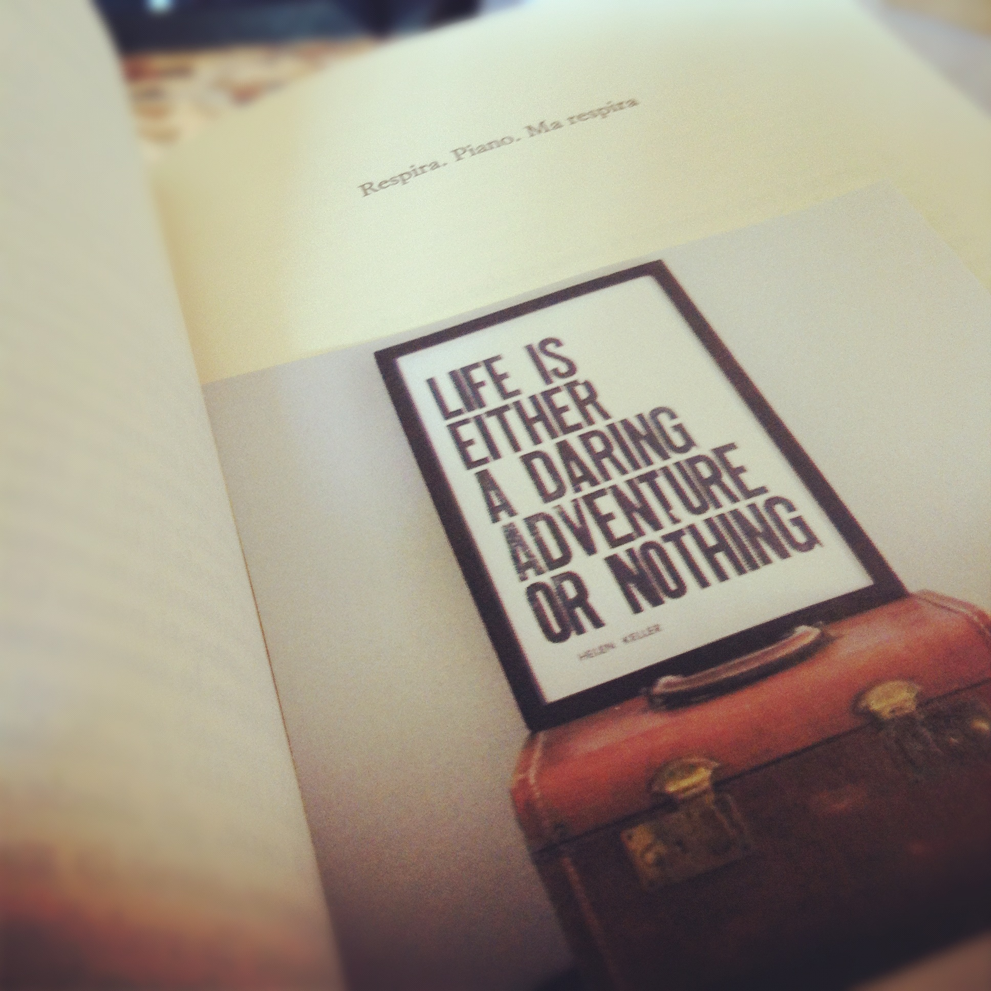 Life is either a daring adventure or nothing - valigia - segnalibro - il momento è delicato niccolò ammaniti