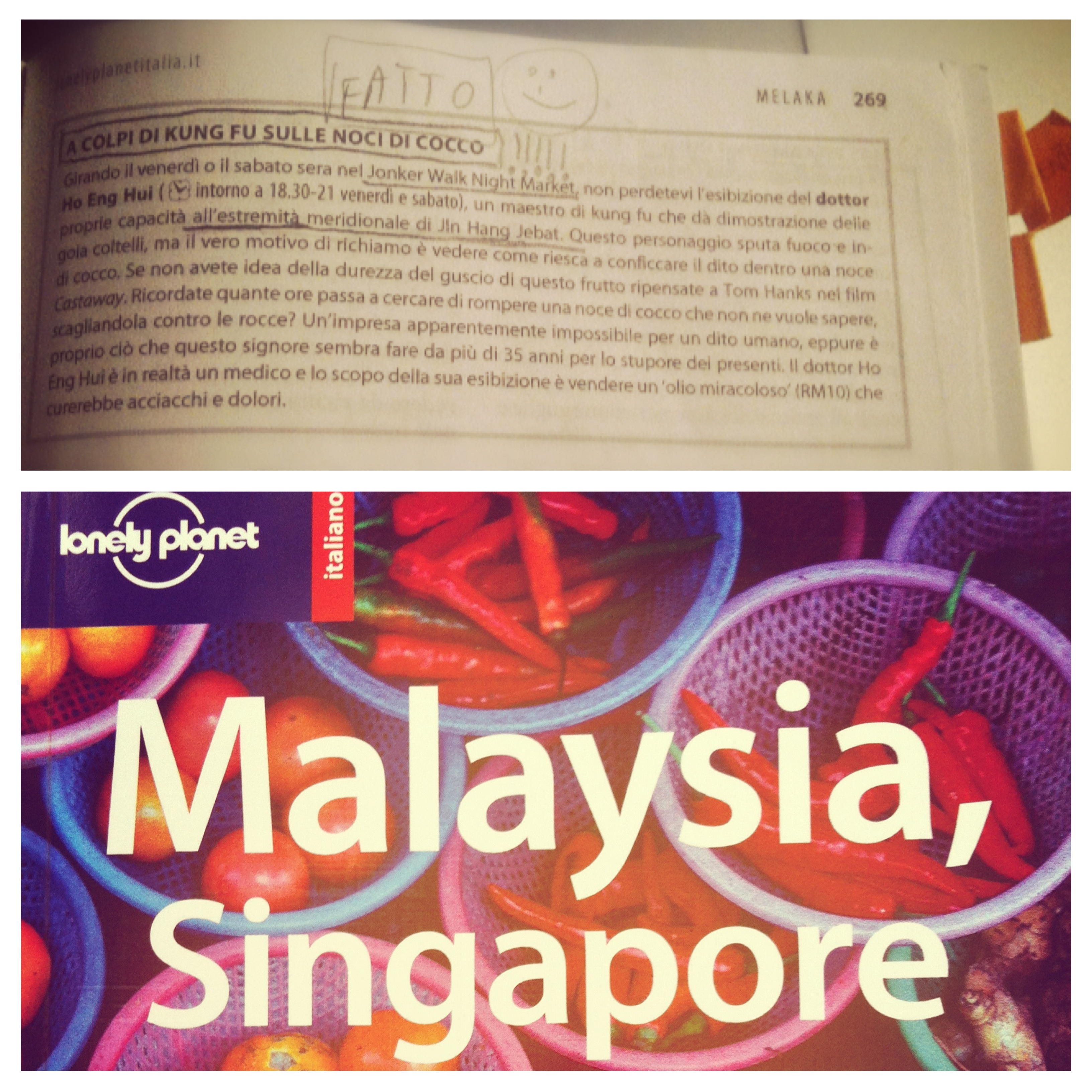 lonely planet malesia singapore